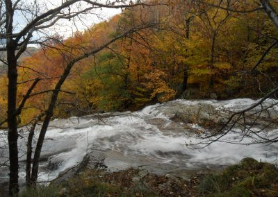 Gite ardèche bois eden paysage